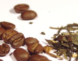 PHACE   COFFEE & TEA (2015/16)